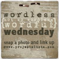 Wordlesswednesdaybutton
