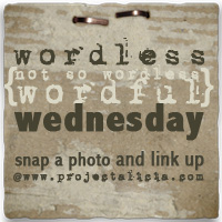 Wordlesswednesdaybutton